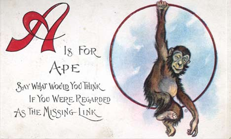 apepostcard.jpg